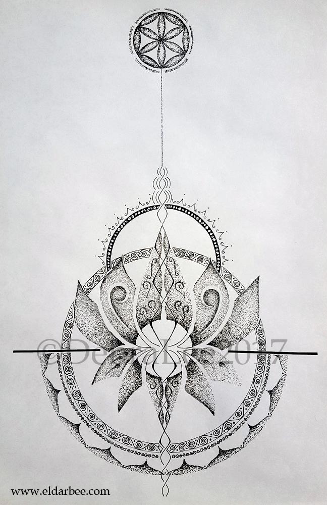 dl-lotus2017
